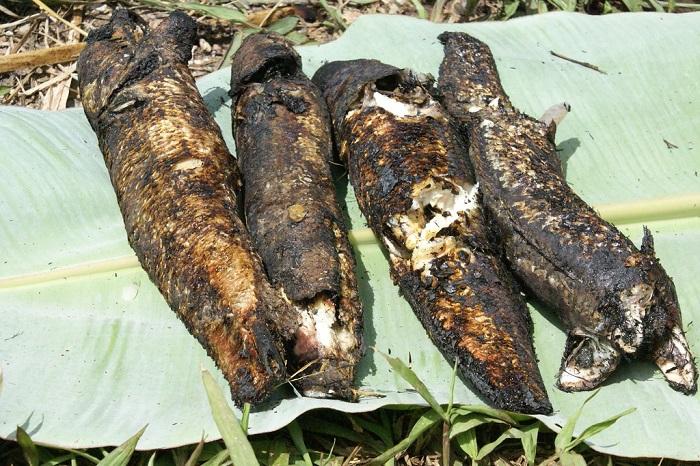 Món cá nướng bên ngoài đen sì, bên trong thơm nức nhất định phải nếm thử khi đến Hậu Giang - 5