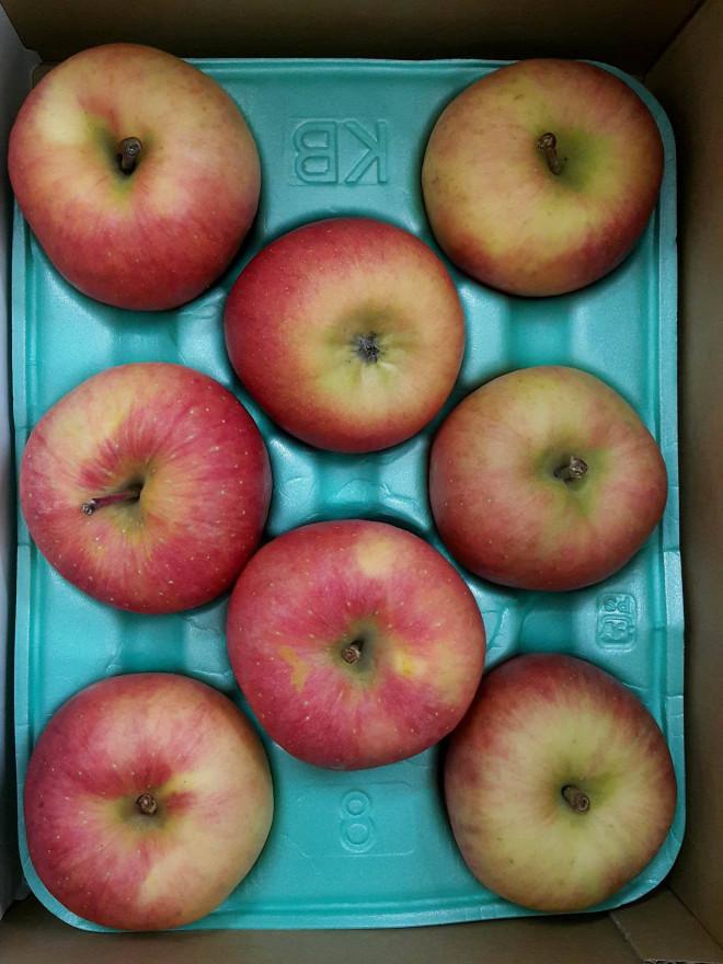 Trang trạitrồng táo đắt nhất thế giới có gì đặc biệt? - 1