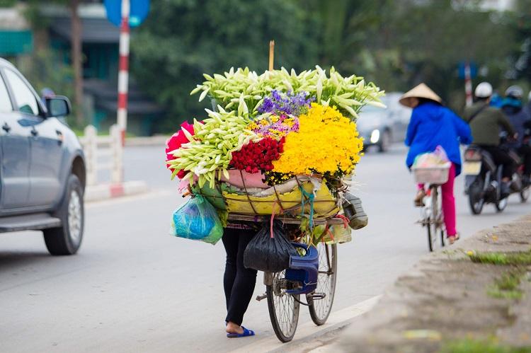 Hà Nội: Xao xuyến những xe hoa loa kèn chở nguồn sống của nhiều lao động ngoại tỉnh - 1