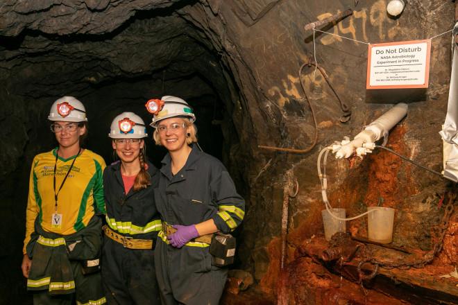 """Sinh vật """"như ngoài hành tinh"""" sống khỏe trong mỏ vàng 1,5 km dưới lòng đất - 1"""