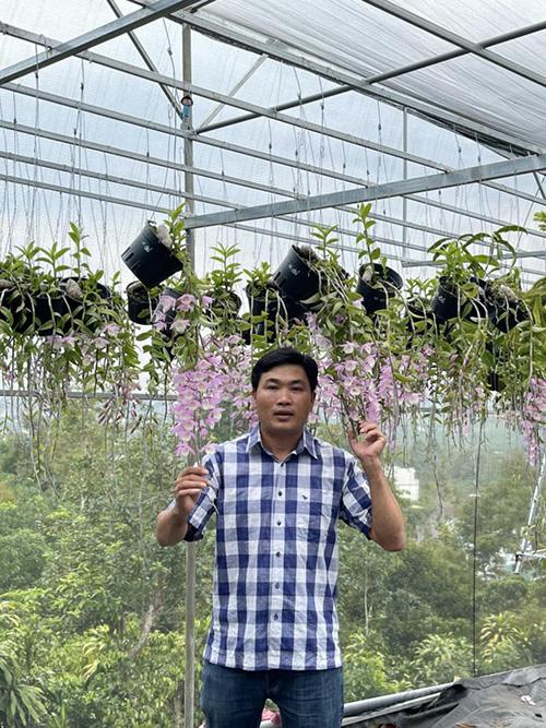 Nghệ nhân Nguyễn Thế Giáo chia sẻ kinh nghiệm trồng và nhân giống hoa phong lan - 1