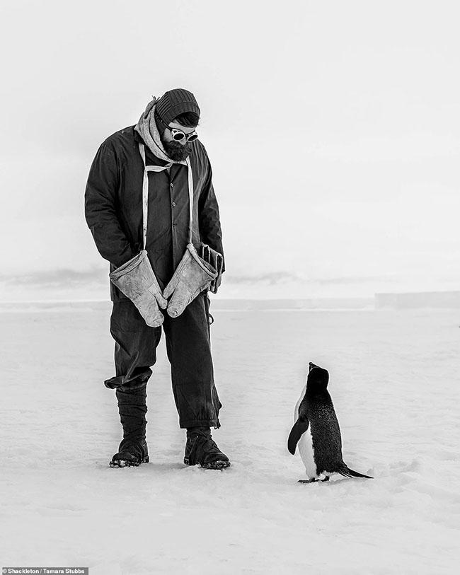 """1. Tamara Stubbs được vinh danh là người chiến thắng chung cuộc trong cuộc thi """"Capture the Extreme"""" nhờ vào bức ảnh vượt thời gian này. Một chú chim cánh cụt đang tò mò nhìn vào một nhà thám hiểm, khoảnh khắc thân mật lạ thường này khiến ai cũng đều thích thú."""