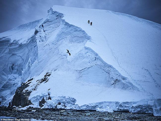 11. Diego Martinez đã chụp lại bức ảnh này trong chuyến thám hiểm ở Nam Cực với nhà leo núi nổi tiếng người Tây Ban Nha - Alex Txikon.