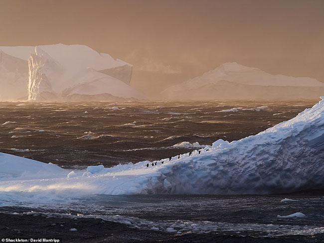6. Bức ảnh Nam Cực này được chụp bởi David Mantripp vào tháng 12 năm 2016 và là người chiến thắng ở hạng mục phong cảnh.Anh đã chụp được hình ảnh đáng kinh ngạc sau một chặng đường dài chèo thuyền.