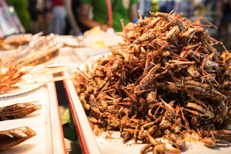 10 món ăn kỳ lạ bạn nhất định phải thử khi đi du lịch Thái Lan - 1