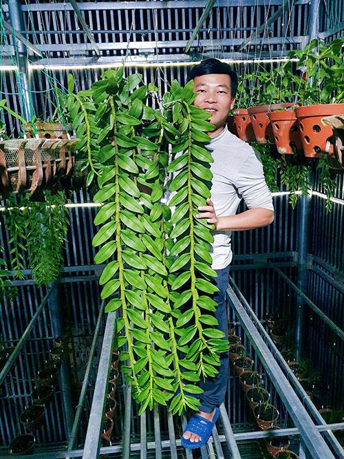 Nghệ nhân Lê Tuấn Tú và cái khó của người trồng lan - 1