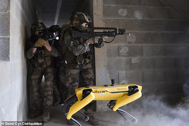 Xem chó robot trị giá 1,7 tỷ đồng của quân đội Pháp 'trổ tài' chiến đấu - 1