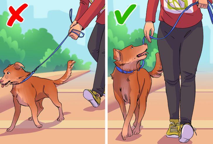5 sai lầm khi tập đi bộ sẽ ảnh hưởng xấu đến sức khỏe của bạn - 1