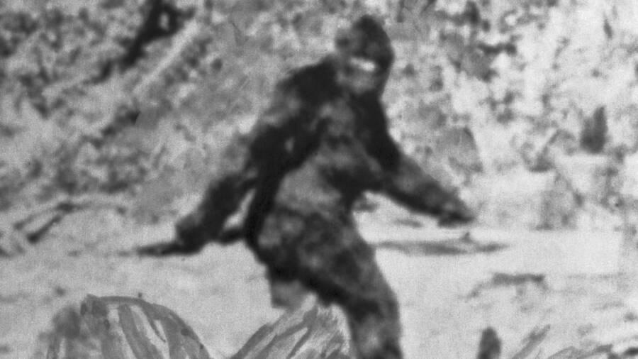 Những lần quái vật Bigfoot huyền thoại lộ diện khiến dân tình ớn lạnh sống lưng - 1