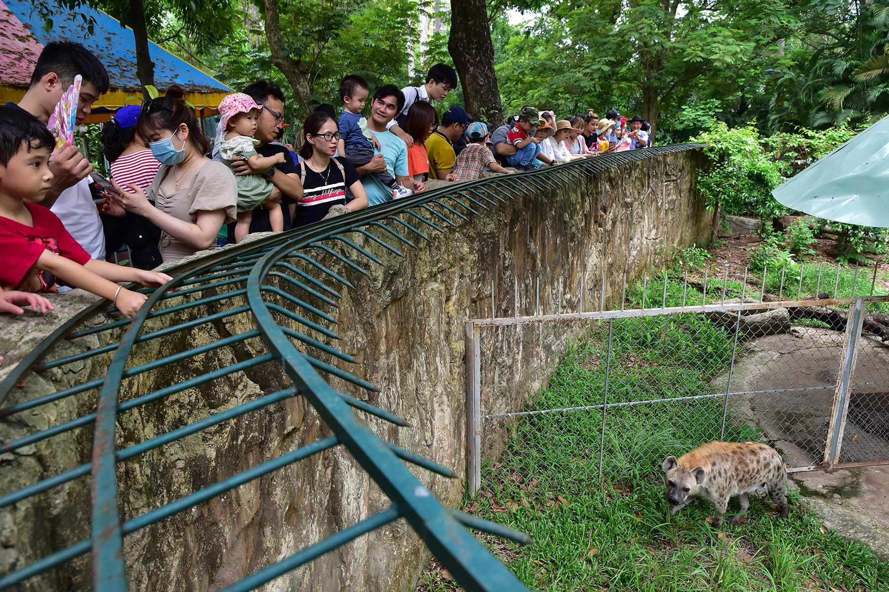 Người dân ùn ùn đi chơi lễ, toát mồ hôi chờ mua vé vào cổng Thảo Cầm Viên - 11