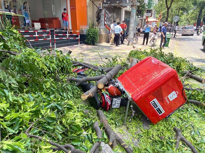 """Sau tiếng gào thét """"chạy đi"""", 2 nhánh cây """"khủng"""" đổ ập xuống đường đè nát xe máy - 1"""