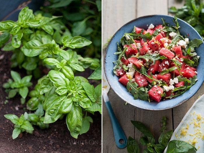 """Dưa hấu đâu chỉ có 1 cách ăn, biến tấu thành món salad """"vạn người mê"""" cực bổ dưỡng - 1"""