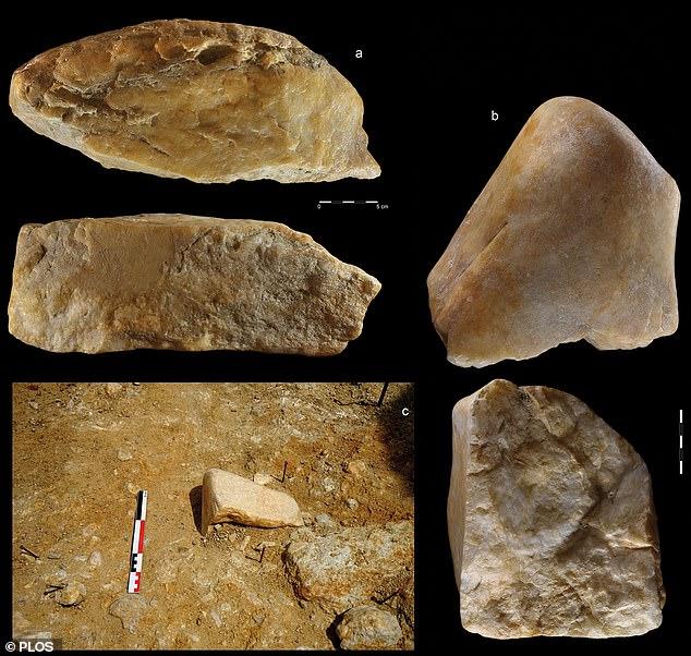 Phát hiện công cụ đá kỳ lạ trong mỏ vàng cách đây 1 triệu năm - 4