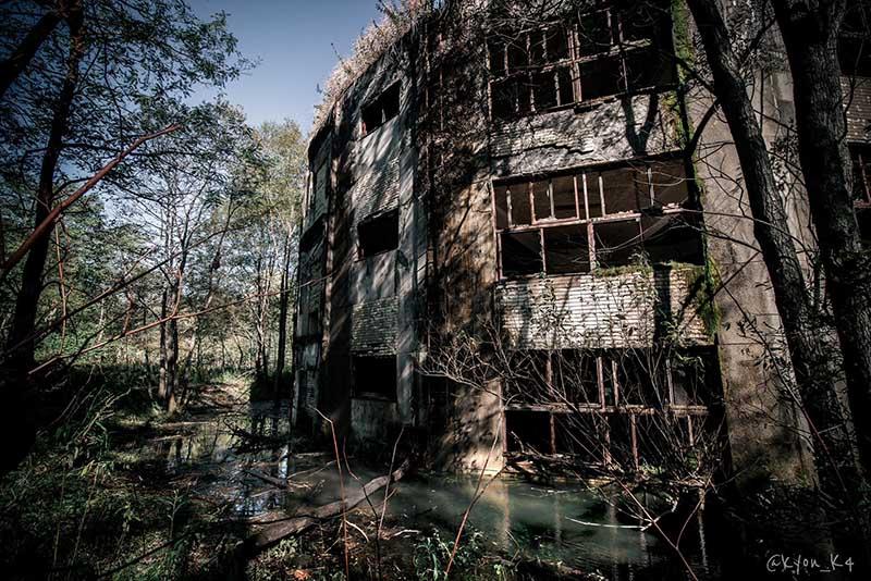 Ngôi trường bỏ hoang suốt 47 năm, bị cây cối nuốt chửng, khung cảnh đầy ma mị - 4