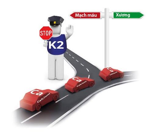 Vitamin K2 có làm trẻ tăng chiều cao vượt trội? - 1