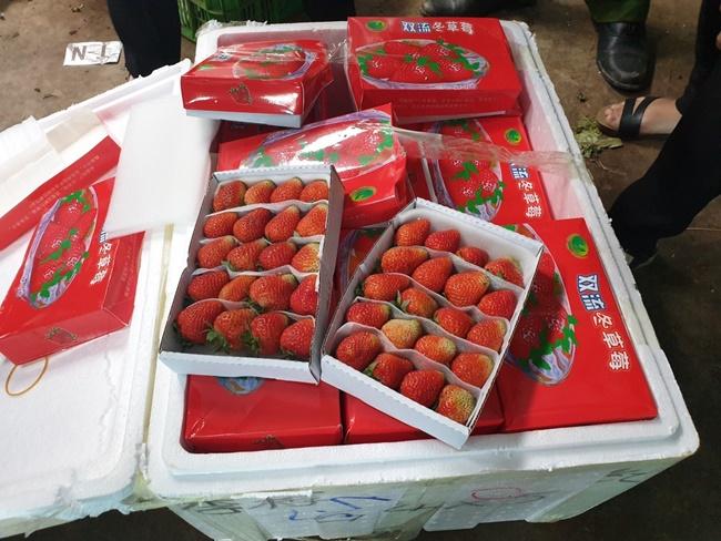 Ngày 26-4, Công an huyện Đức Trọng (Lâm Đồng) phát hiện lô hàng dâu tây tươi Trung Quốc nhập lậu tại Cảng hàng không Liên Khương.Tại thời điểm kiểm tra, toàn bộ lô hàng trên không có hóa đơn chứng từ chứng minh nguồn gốc xuất xứ, tổng trọng lượng hơn 200kg.