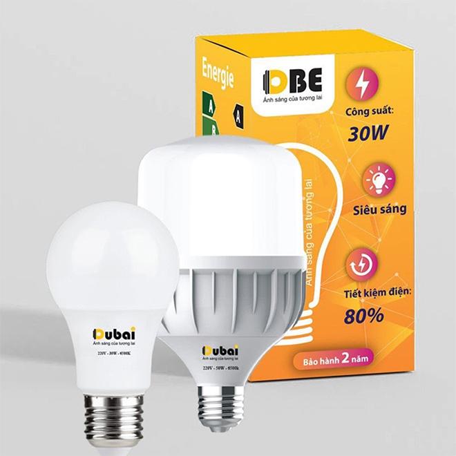 Công ty Thiết bị điện Dubai Electric - nâng tầm chất lượng ánh sáng Việt - 1