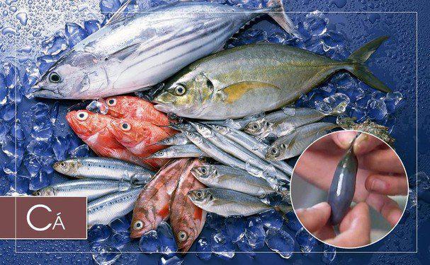2 bộ phận không nên ăn ở cá, cẩn thận trúng độc - 1