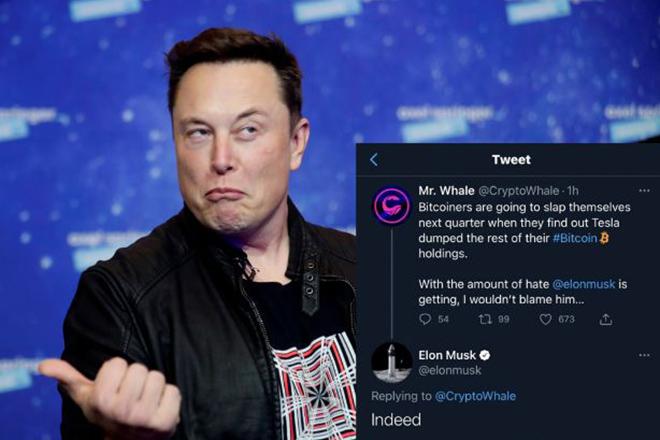 Elon Musk ám chỉ Tesla đã bán sạch Bitcoin, bỏ ngỏ tương lai tiền ảo - 1