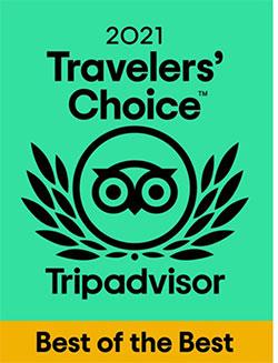 Tự hào du lịch Việt Nam với giải thưởng Travellers' Choice 2021 Best of the Best từ Tripadvisor - 1