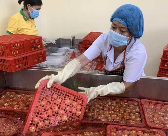 Mới đây,20 tấn vải thiều của đất vải Bắc Giang sang đến Nhật được tiêu thụ gần hết sau ngày đầu tiên mở bán.