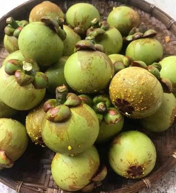 Thứ quả thường ăn chín, ai ngờ để xanh thành đặc sản giá cao gấp 10 lần - 1