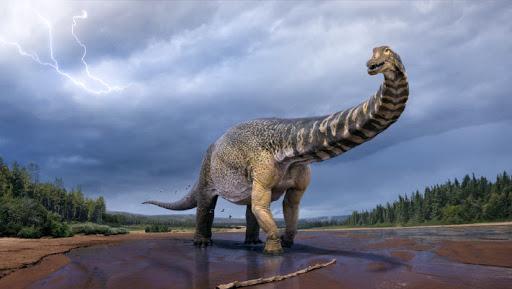 """Phát hiện hóa thạch gây sốc của loài """"siêu quái thú"""" nặng 74 tấn - 1"""
