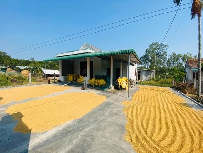 Căn nhà đơn sơ, giản dị của Hồ Bích Trâm ở Đức Phổ, Quảng Ngãi. Trước nhà là mảnh sân rộng rãi đủ để gia đình cô phơi thóc mỗi khi tới mùa gặt.
