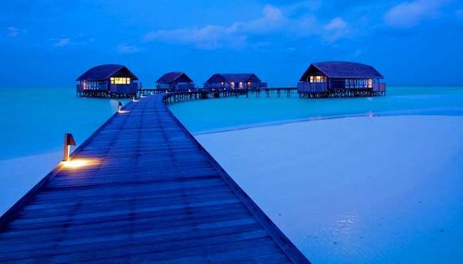Đảo Cocoa ở Maldives: Trong số rất nhiều bãi biển trên đảo tuyệt đẹp ở Maldives, đảo Cocoa là một trong những hòn đảo đắt đỏ nhất để ghé thăm. Vẻ đẹp mê hồn của nó với những bãi biển cát hoang sơ và làn nước xanh ngọc là nơi trải nghiệm quen thuộc của nhiều cậu ấm, cô chiêu.