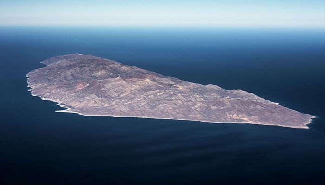 Đảo Cerralvo ở Mexico: Đảo Cerralvo ở Mexico được biết đến với hệ sinh vật biển phong phú và mang đến trải nghiệm câu cá tốt nhất. Cá kiếm, cá cờ và cá mú vàng là những loại cá phổ biến nhất ở đây.