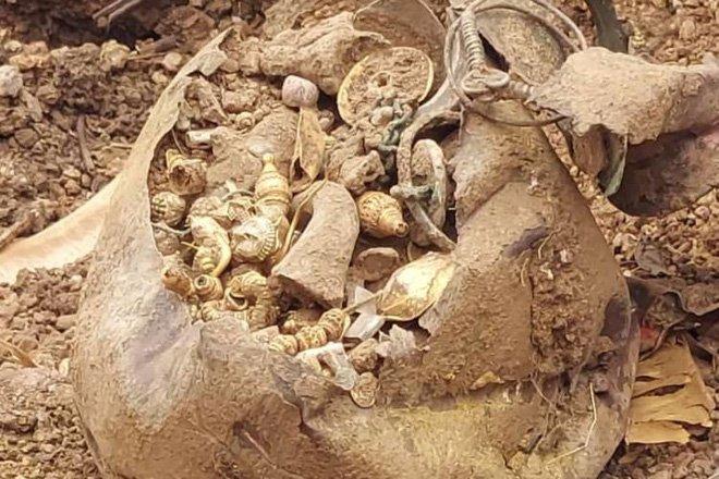Bất ngờ đào được kho báu khổng lồ khi đang san lấp đất - 1