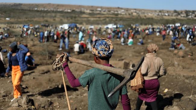 Khi có người tìm thấy những viên đá không rõ nguồn gốc, hàng ngàn người đổ đến một ngôi làng để tìm kim cương.