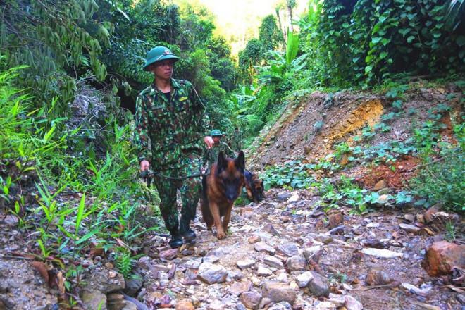 CLIP: Nổ mìn đánh sập 75 hầm vàng trong Vườn Quốc gia Sông Thanh