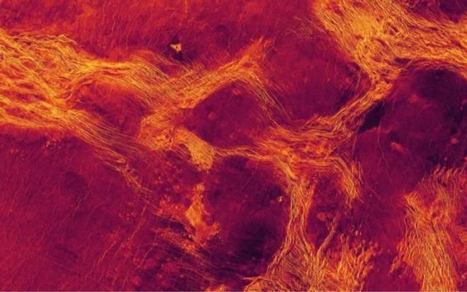 NASA chụp được bằng chứng Sao Kim sống được từ 17 năm trước? - 1