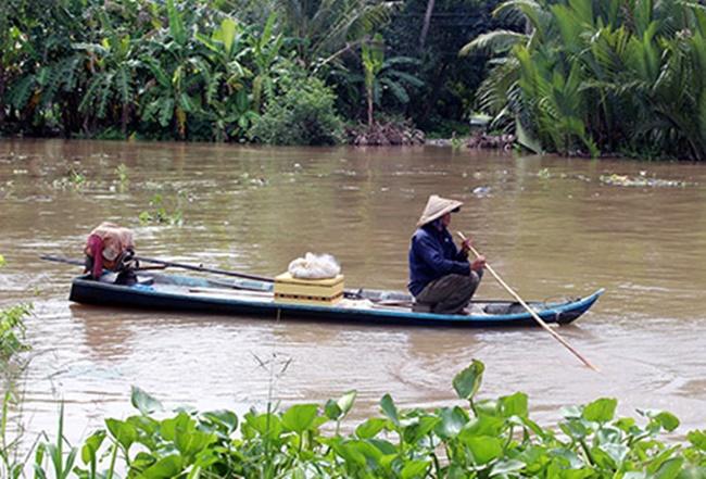 Cá mè vinh sống nhiều trên sông Tiền, họ cá chép, vảy trắng, thịt ngọt, ăn rất béo nhưng nhiều xương hom, được liệt vào hàng đặc sản của sông nước.