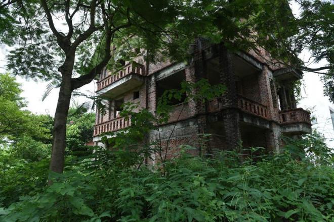 CLIP: Hàng loạt biệt thự bỏ hoang, khu đô thị ở Hà Nội thành nơi chăn thả bò - 1