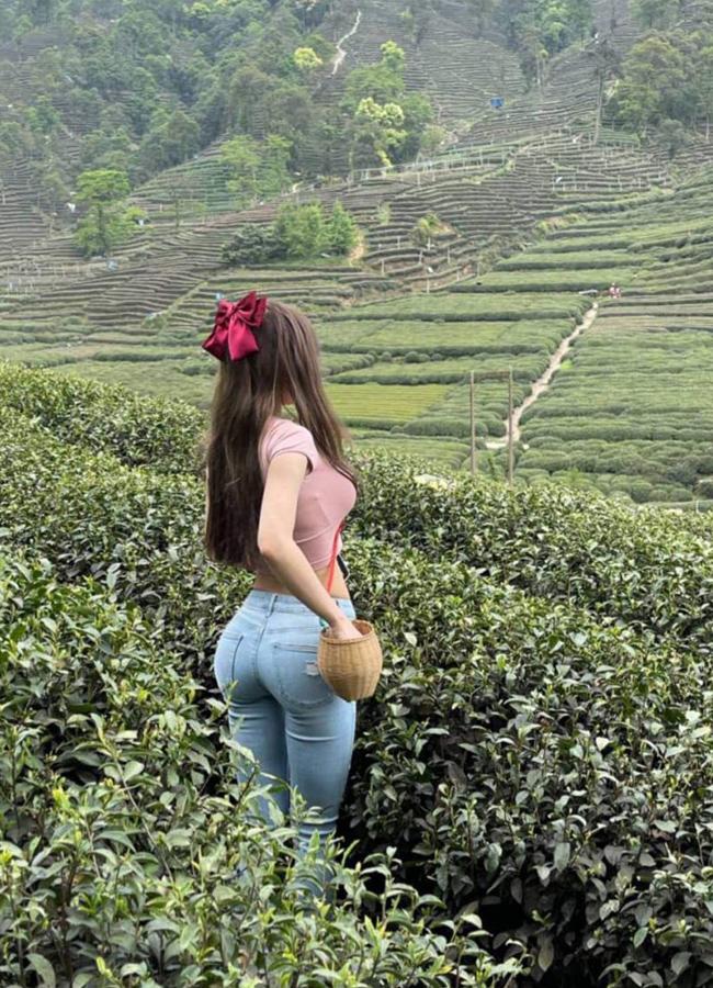 """Đi hái chè, mỹ nữ Hàng Châu diện quần jean """"độ"""" dáng hoàn hảo."""