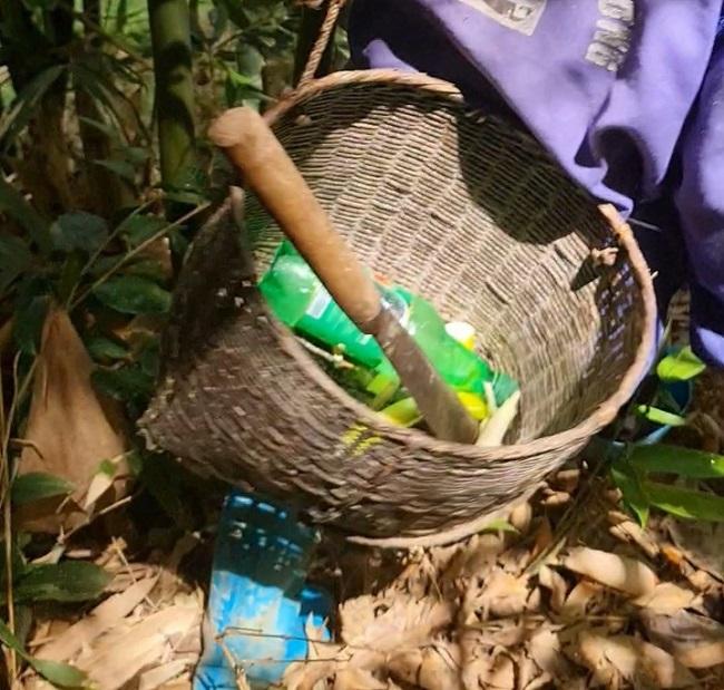 """Đi tìm """"lộc rừng"""" vào mùa mưa, người dân vùng núi kiếm tiền triệu mỗi ngày - 1"""