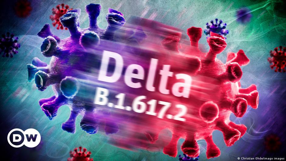 Covid-19: Phát hiện cách biến chủng Delta lây lan rất nhanh - 1