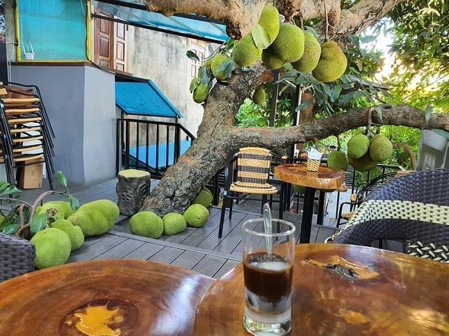 Dân mạng thích thú truy tìm quán cà phê với cây mít xanh mát, trĩu quả lăn lóc giữa sàn - 1