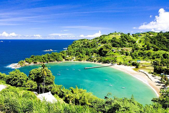 Tobago, Caribe: Tobago có lẽ là nơi thư thái nhất của Caribe để đưa trẻ em theo cùngvới hàng chục hoạt động thú vị ngoài trời và trải nghiệm cùngđộng vật hoang dã, từ cưỡi ngựa bên bãi biển đến ngắm chim ruồi...