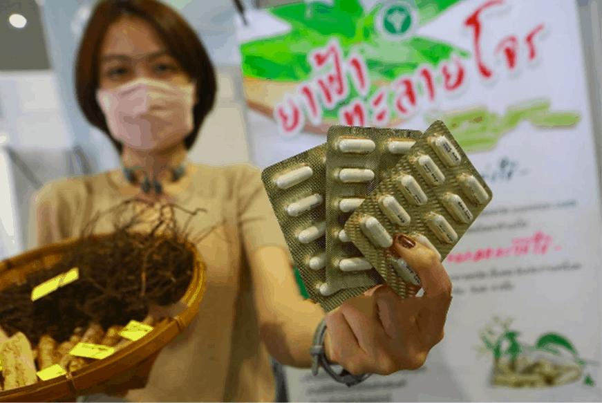 Dân Thái Lan phát sốt vì xuyên tâm liên - 1