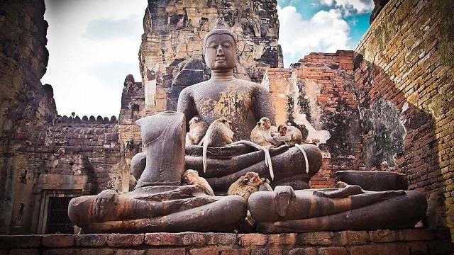 Saigontourist Group tiếp tục tài trợ 8 tour tri ân y bác sĩ tuyến đầu