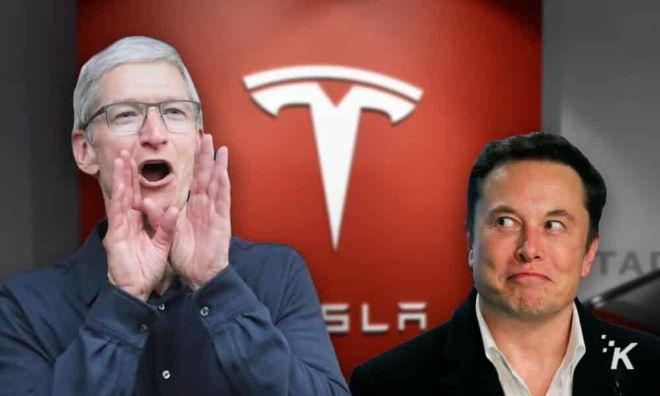 Elon Musk đã đòi hỏi gì ở Apple khiến Tim Cook phải văng tục - 1