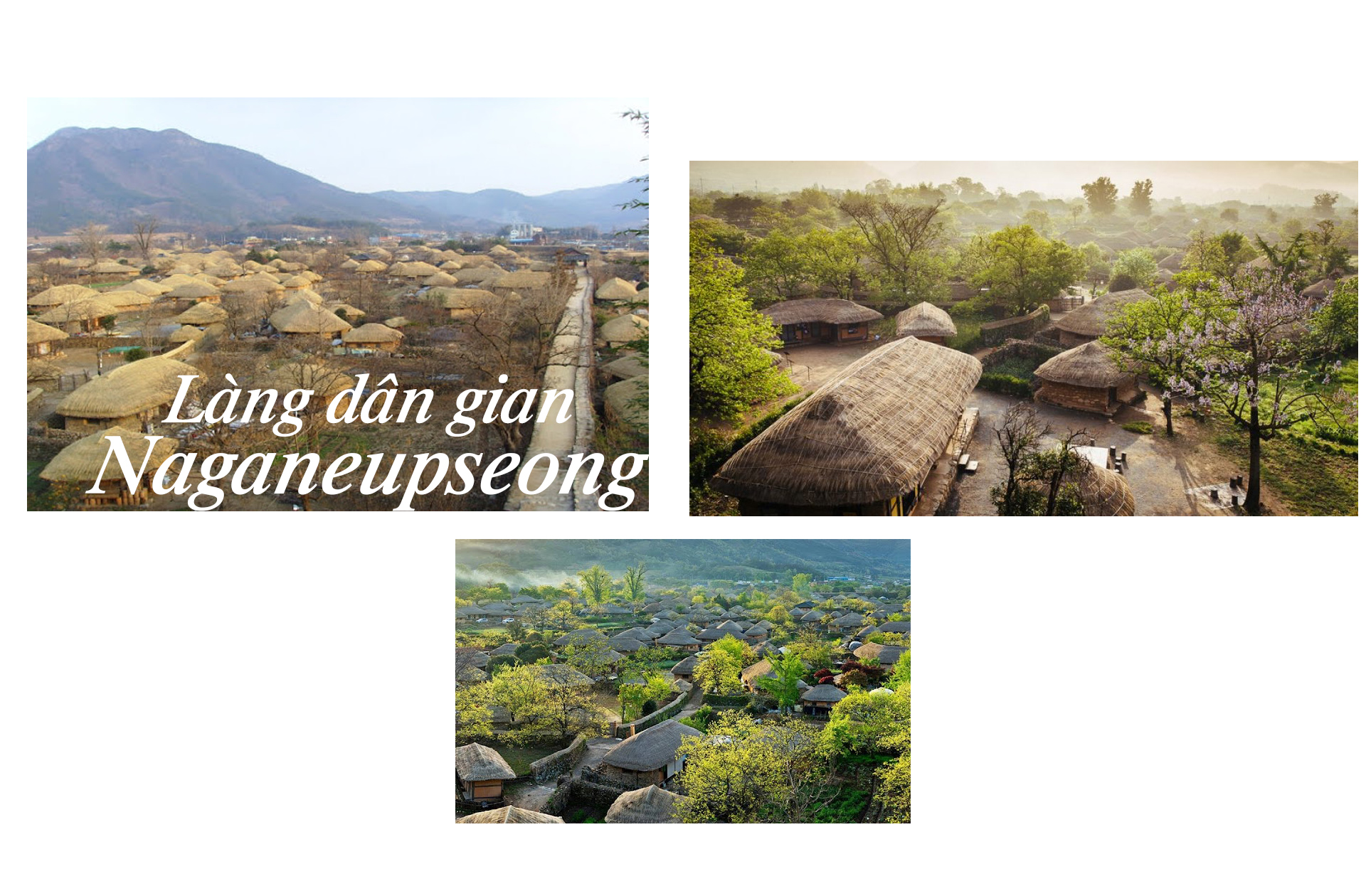 Những điểm đến tuyệt vời nhất Hàn Quốc - 8