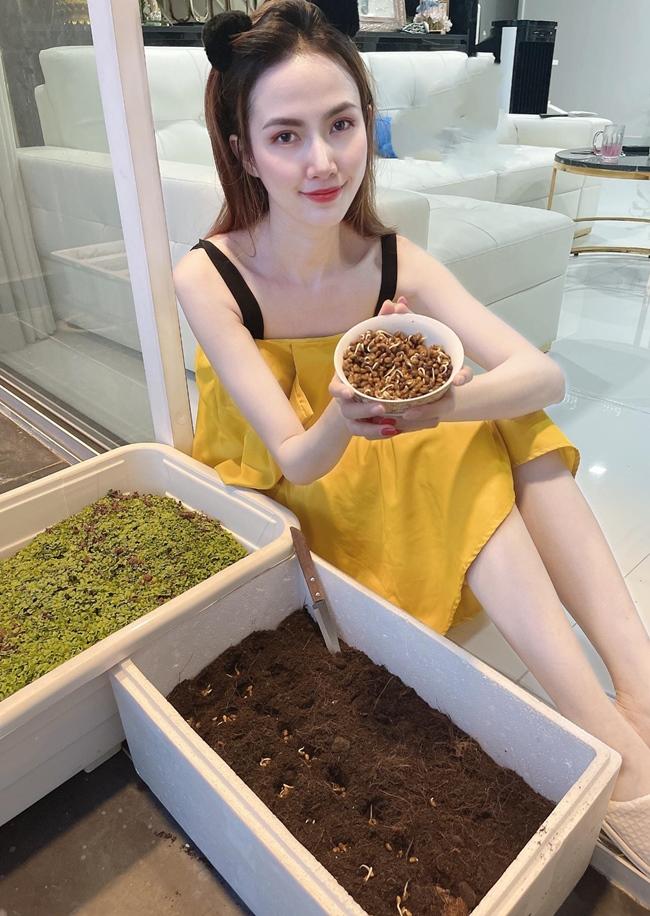 Trong thời gian ở nhà tránh dịch, Phan Thị Mơ còn trổ tài trồng hành và các loại rau khác.