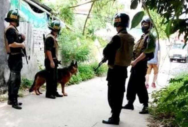 Cảnh sát thu giữ 17 con hổ trong nhà dân ở Nghệ An - 1