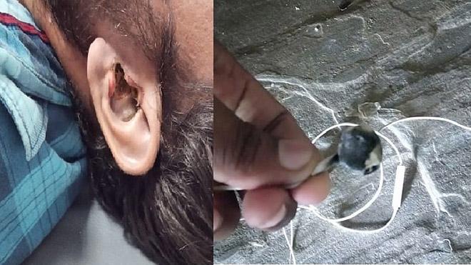 Thiệt mạng vì sử dụng tai nghe không dây - 1