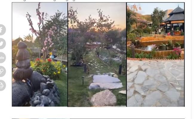Trong khuôn viên, vợ chồng nữ nghệ sĩ trồng rất nhiều loại rau, cây ăn trái, cây cảnh, thậm chí còn có góc riêng để nuôi gà, vịt, cá...