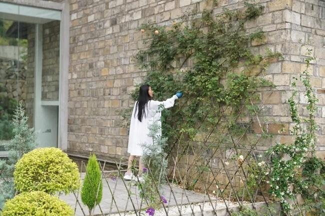 Thậm chí, khi thấy vợ chồng Li Xiumei sửa sang nhà, nhiều người hàng xóm cũng tò mò và mong muốn họ góp vốn để cùng sửa chữa làm homestay.
